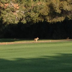 Photo taken at Orange Tree Golf Resort by Jim P. on 3/23/2013