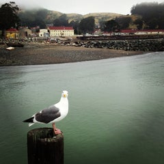 Photo taken at Fort Baker jetty by Michelle F. on 5/12/2013