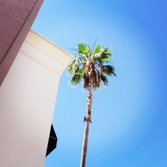 Photo taken at Apple Store, Chandler Fashion Center by Frank B. on 6/4/2013