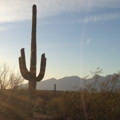 Photo taken at Saguaro National Park by Gary M. on 5/8/2013