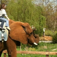 Photo taken at Natural Bridge Zoo by Nathan L. on 4/1/2012