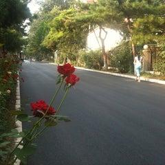 Photo taken at 北京大学医学部 by S O. on 8/28/2012