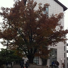 Photo taken at 이화여자대학교 포스코관 (Ewha Womans University POSCO Building) by Stella K. on 1/3/2012