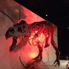 Photo taken at Museum of Science and History by Steven on 7/13/2012