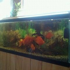Photo taken at Thai Kitchen by Rex E. on 8/24/2011