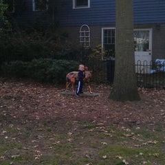 Photo taken at Oakwood Common by Leslie D. on 12/14/2011
