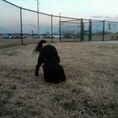 Photo taken at Camp Barkeley Dog Park by Heather T. on 2/18/2011
