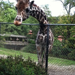 Photo taken at Erie Zoo by Anthony C. on 9/24/2011