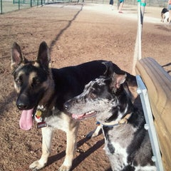 Photo taken at Camp Barkeley Dog Park by Brandon A. on 2/24/2011