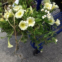 Photo taken at Lowe's Home Improvement by Jared I G. on 5/25/2012
