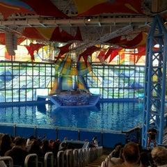 Photo taken at Nautilus Amphitheater at SeaWorld by brian m. on 2/19/2012
