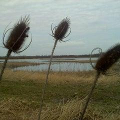 Photo taken at Iroquois National Wildlife Refuge by Debi B. on 3/18/2012