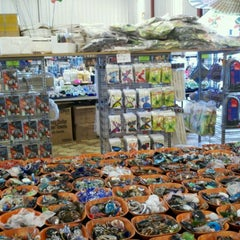Photo taken at Gem World by Denise A. on 1/20/2011