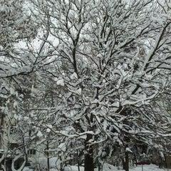 Photo taken at Парк Хиподрума by Enna P. on 2/15/2012