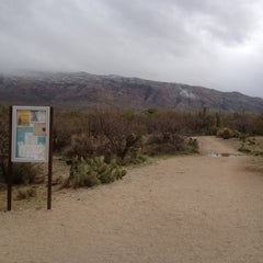 Photo taken at Saguaro National Park by Carolyn A. on 3/18/2012