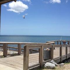 Photo taken at Port Saint Joe Marina by Tami K. on 6/17/2012
