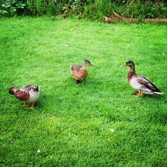Photo taken at Winchcombe Camping and Caravanning Club Site by Gayle F. on 8/11/2012
