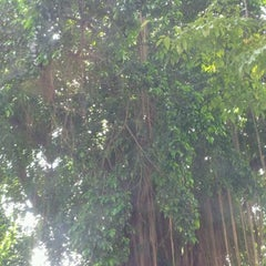 Photo taken at SD Pangudi Luhur by Devy B. on 5/23/2012