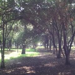 Photo taken at Parque De Paseo De Los Pirules by Pablo M. on 10/8/2011