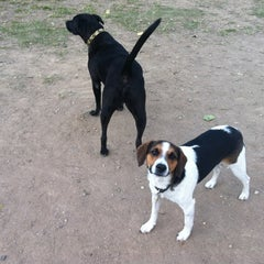 Photo taken at White Rock Lake Dog Park by Mikel G. on 11/5/2011