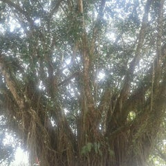 Photo taken at Rumah Makan Singgalang Jaya by Harry R. on 8/28/2011