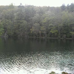 Photo taken at New York YMCA Camp by Tiantha F. on 5/6/2012
