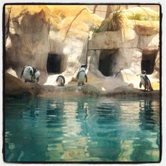 Photo taken at Tulsa Zoo by Chase C. on 6/9/2012