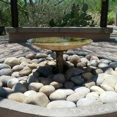 Photo taken at Desert Botanical Garden by Stephen B. on 8/4/2012