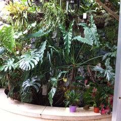 Photo taken at NYULMC-RUSK Institute by Glenda G. on 6/22/2012