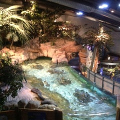 Photo taken at National Sea Life Centre by Paul B. on 6/21/2012
