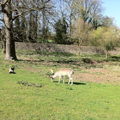 Photo taken at Knole Park by James B. on 4/9/2011