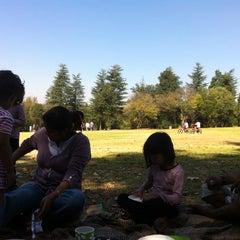 Photo taken at Johannesburg Botanical Gardens by Muhammad K. on 5/6/2012