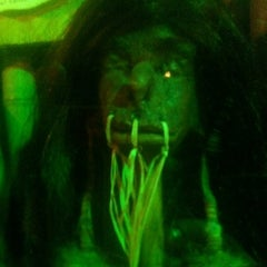 Photo taken at Museum Of The Weird by Aerin G. on 3/8/2012