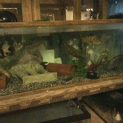 Photo taken at Ed's Pet World by Mr R. on 8/10/2012