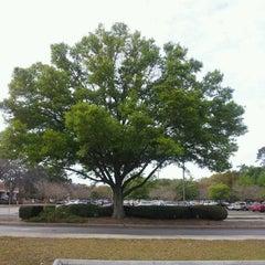 Photo taken at Jacksonville University by Willam J. on 3/7/2012