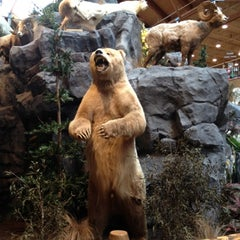 Photo taken at Cabela's by Matthew M. on 8/5/2012