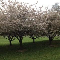 Photo taken at Washington Park by Sue W. on 4/17/2012