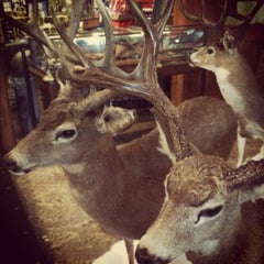 Photo taken at Bass Pro Shops Outdoor World by Lizzie R. on 12/13/2011
