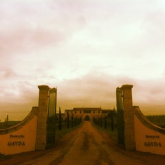 Photo taken at Domaine Gayda by Franck M. on 5/18/2012