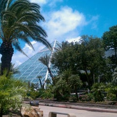 Photo taken at Moody Gardens Aquarium Pyramid by Mike S. on 6/17/2011