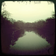 Photo taken at Mystic River Reservation by Laura on 3/20/2011