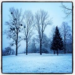 Photo taken at Bad Vilbel by Robert R. on 1/27/2012