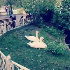 Photo taken at Лебединое озеро by Alena K. on 8/15/2012