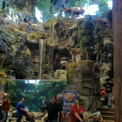 Photo taken at Bass Pro Shops by Chad on 11/27/2011