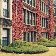 Photo taken at 연세대학교 (Yonsei University) by xxx P. on 10/25/2011