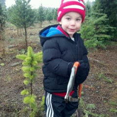 Photo taken at McMurtrey's Red-Wood Christmas Tree Farm by Kevin M. on 12/10/2011