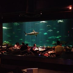 Photo taken at Sharks Underwater Grill by Breno M. on 4/12/2012