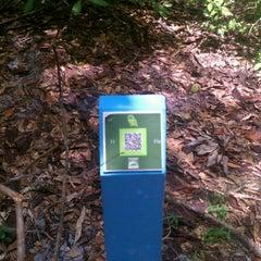 Photo taken at Jacksonville Arboretum & Gardens by David Kleinik F. on 6/14/2012