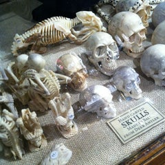 Photo taken at The Evolution Store by Bernie A. on 8/14/2012