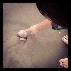 Photo taken at Hunting Island Beach by Charlie H. on 4/3/2012